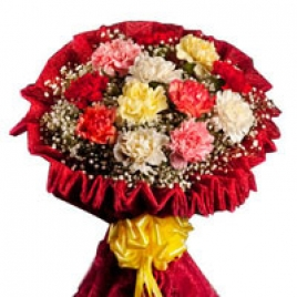 10 Mix Carnations Bunch