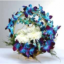 Blue Orchid N White Carnations