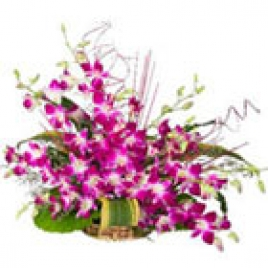10 Orchids Arranged In A Basket