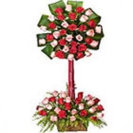 2-Tier Arrangement Of 50 Red And Pink Roses