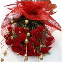 12 Red Carnations With Golden Dry