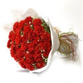 20 Red Carnations Bunch