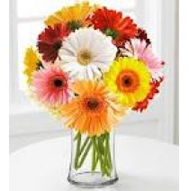 10 Colorful Gerberas In A Glass Vase